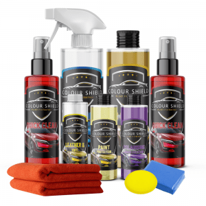 Car Paint Protection Platinum Kit